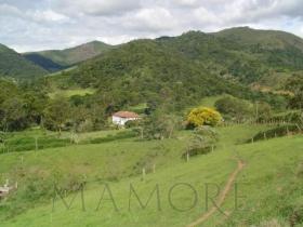 [CI 0300] Fazenda em Itaipava